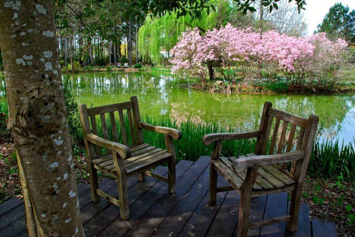 7. Moore Farms Botanical Garden
