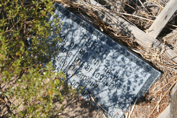 haunted pet cemetery