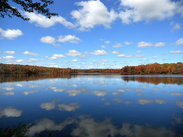 10. Lakeside Trail - Tobyhanna State Park