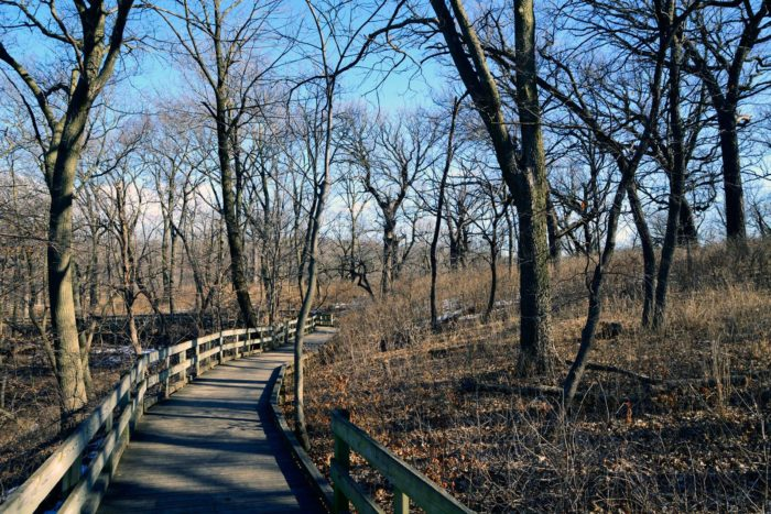 5. Fontenelle Forest Trails