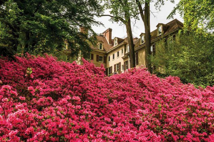 4. Feel like American Royalty at Winterthur