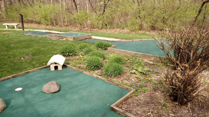 You can also play miniature golf for $5 a person, which is another fun family or group activity to do.