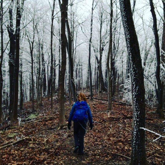7. Spicewood Branch Trail - Wartburg