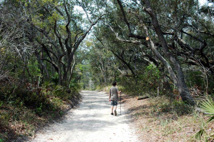 6. Pine Beach Trail