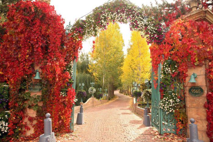 Autumn at La Caille is gorgeous.