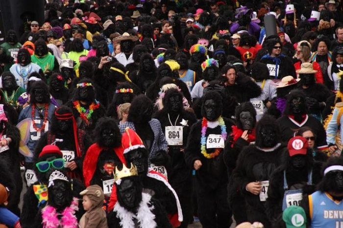 2. Denver Gorilla Run