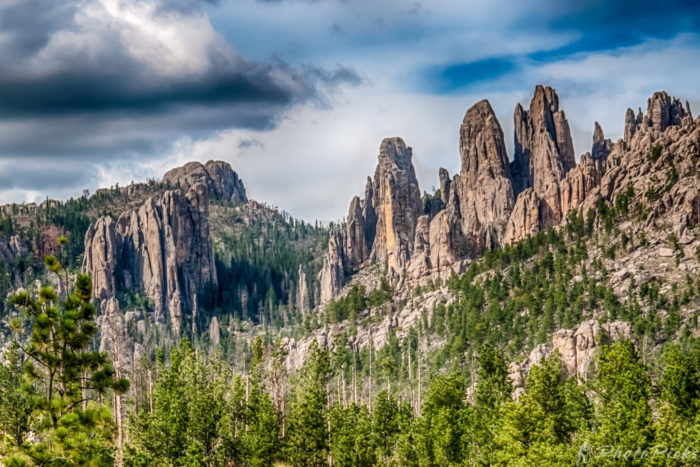 2. The spires of Custer State Park