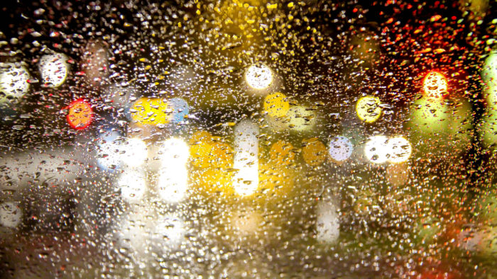 13. If it does indeed rain, everyone will instantly forget how to drive.