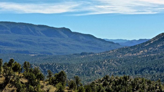 3. Blue Range Primitive Wilderness