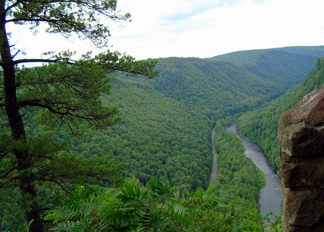 13. Visit the Grand Canyon of Pennsylvania.