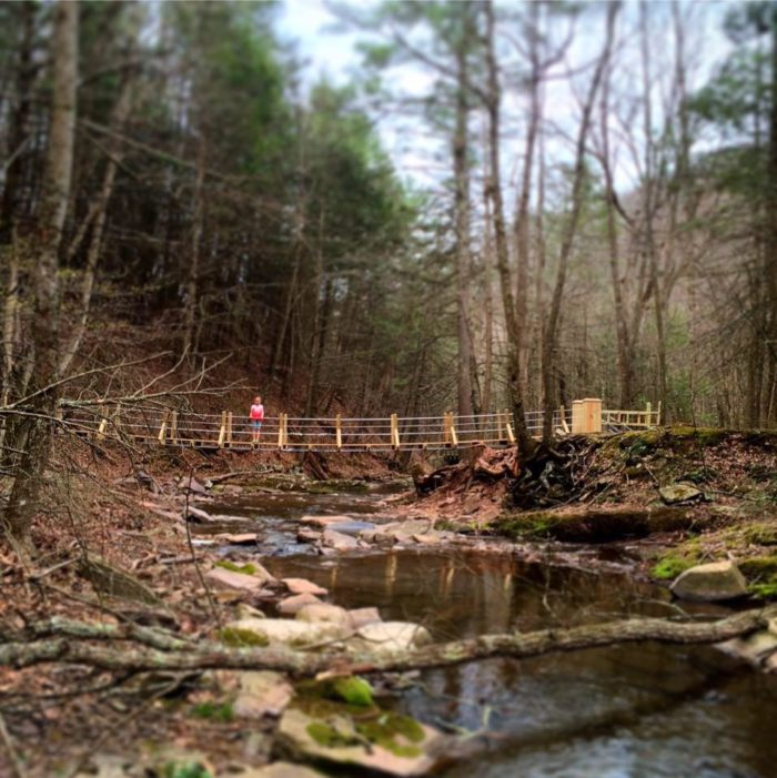 4. Howard's Lick Run Trail, Lost River State Park