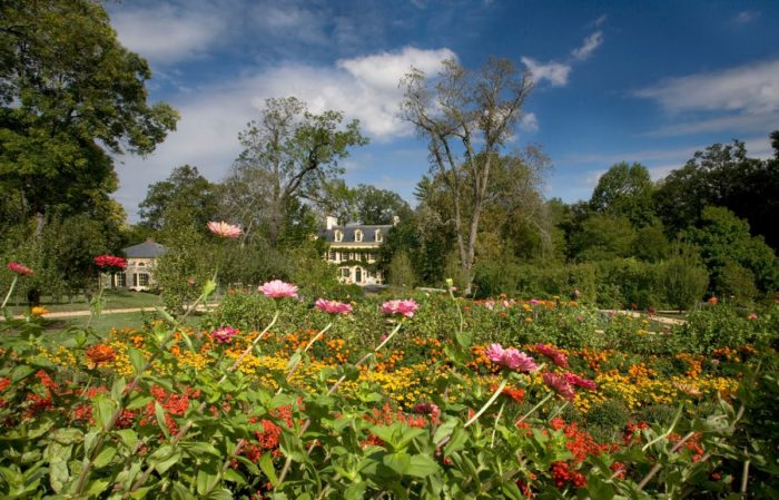 8. Stop and Smell the Roses at the Hagley Estate