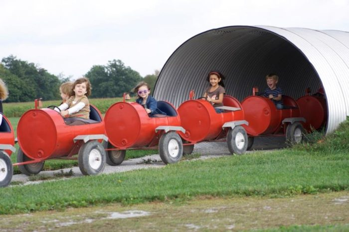 Kids can also enjoy a barrel ride around the farm aboard the Moovers and Shakers ride.