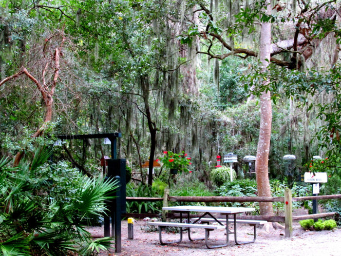3. Jekyll Island Campground: 1197 N Riverview Dr, Jekyll Island, GA 31527-0748