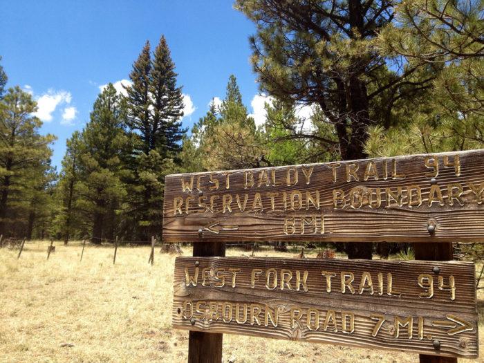 3. Take a hike along West Baldy Trail.