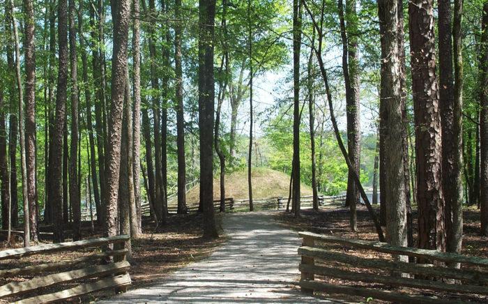 8. Lakeshore Trail At Chewalla Lake Recreation Area