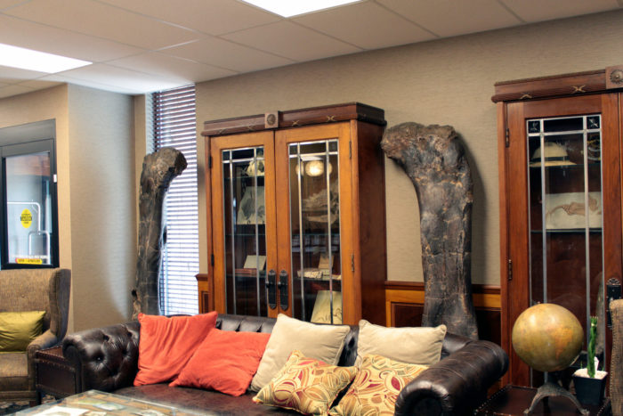 """And have you met """"The Legs"""" (a.k.a. Brachiosaurus femora)?  Upper hind leg bones and other findings similar to these have been excavated from the Morrison Formation just a few miles from the hotel."""