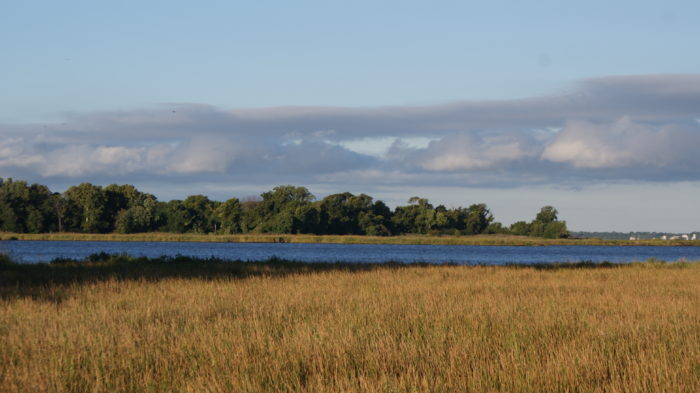 It encompasses 2,285-acres of lush habitats for migratory birds, including wetlands, grasslands, and ponds.