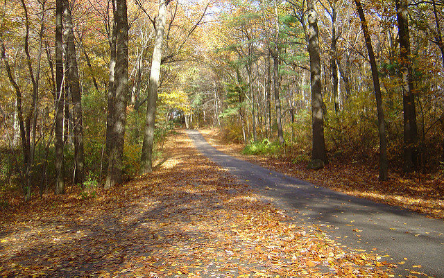 2. Lincoln Woods State Park, Lincoln