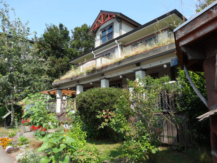 8. Hawthorne Hostel
