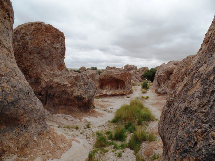 8. City of Rocks State Park, near Deming