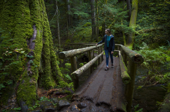 To get there, you'll take a scenic 2-mile hike through a lush, green forest on the McKenzie River Trail.