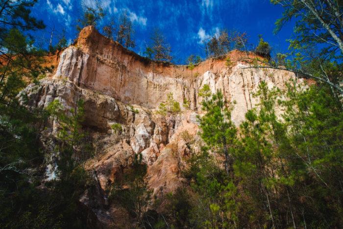7.  Providence Canyon —8930 Canyon Rd, Lumpkin, GA 31815