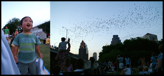 Every summer night at dusk, 1.5 million Mexican Free-Tailed bats emerge from underneath the bridge.