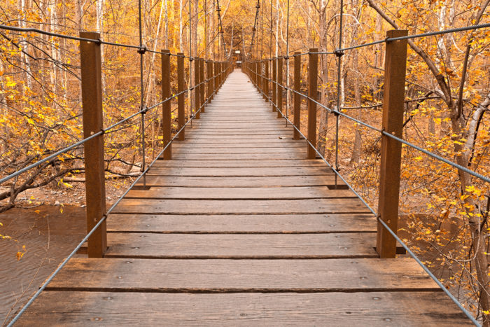 The bridge is quite unique, and this area also boasts spectacular foliage views during autumn.