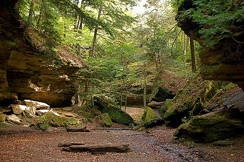 2. Rocky Hollow Falls Canyon Nature Preserve - Bloomingdale