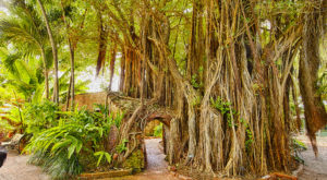 13 Hidden Gems You Have To See In Florida Before You Die
