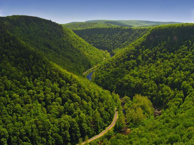14. West Rim Trail – Pine Creek Gorge