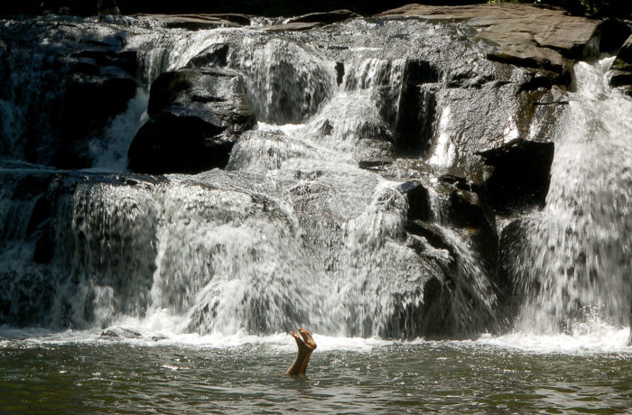 1. The Falls on Waters Creek, Cleveland, GA