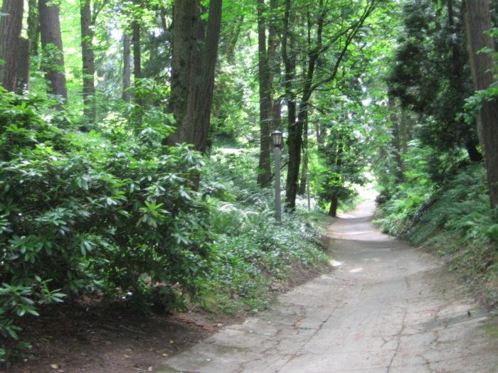 5. Washington Park Loop