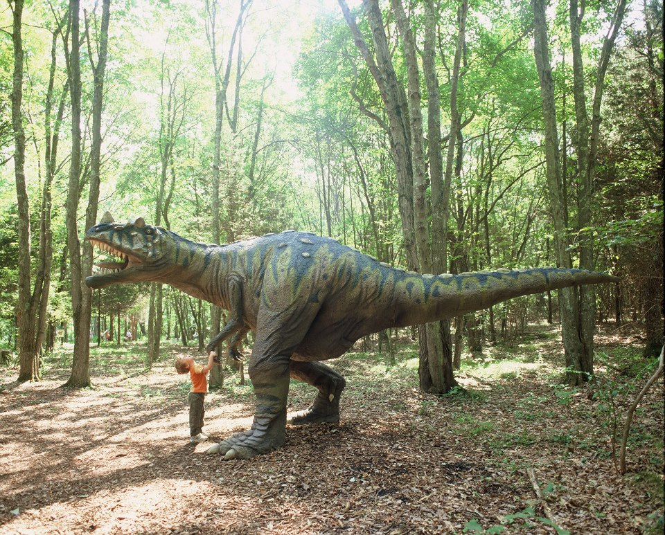 This Unique Park In Connecticut Lets You Walk With Dinosaurs