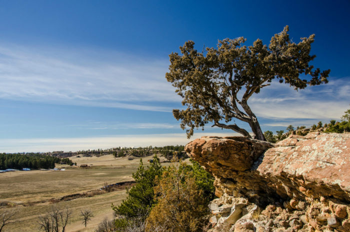 5. Castlewood Canyon State Park Trails