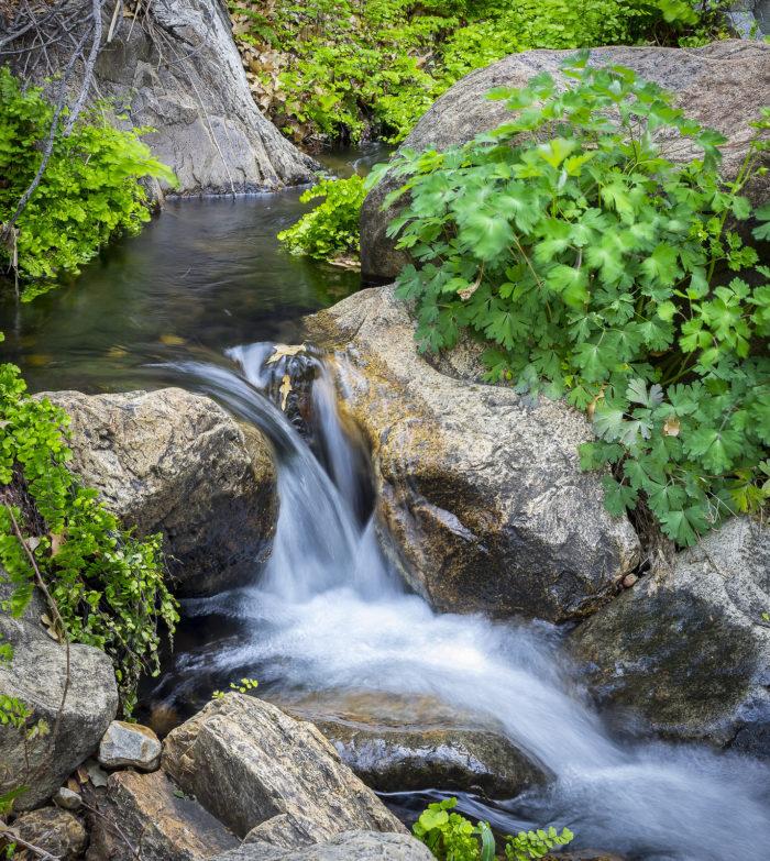 3. Cattail Falls (Big Bend National Park)