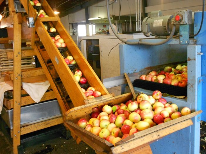 Green Mountain Orchards
