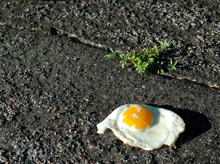 4.  You've attempted to cook food in the heat, like fry an egg on the asphalt or bake cookies in your car.