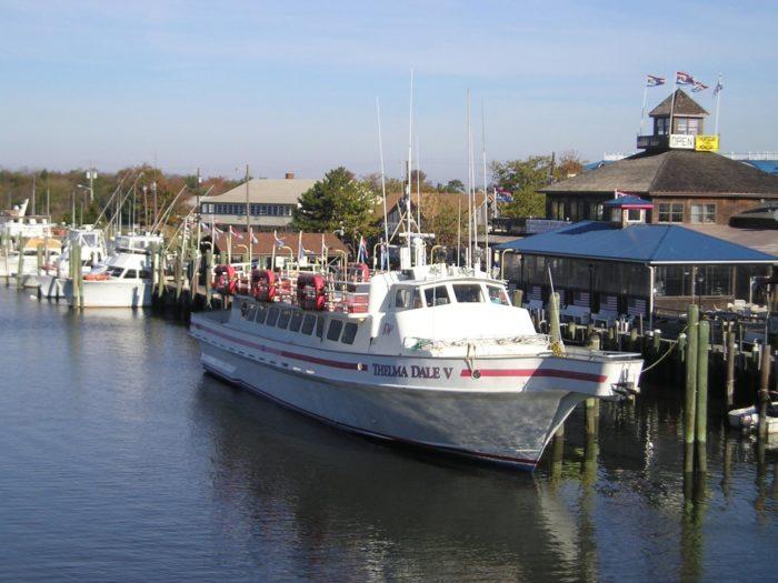 10. Cruise from Fisherman's Wharf