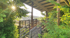 5. Shelby Bottoms Nature Center & Greenway