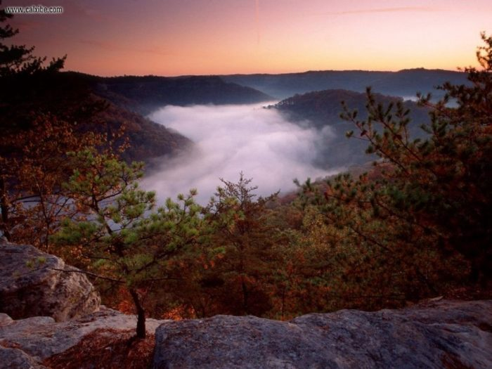 2. Red River Gorge Geological Area, Winchester