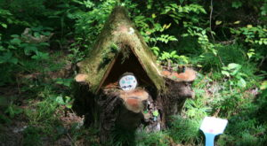 Most People Don't Know Maryland Has A Fairy Trail And It's Positively Magical
