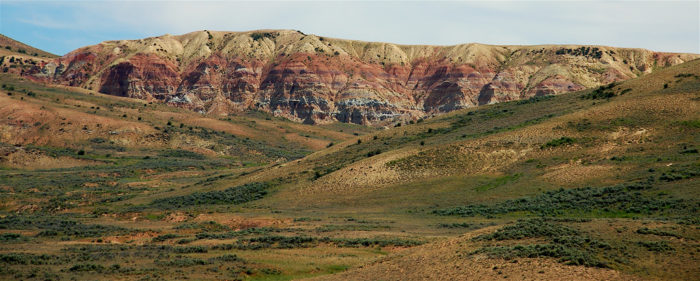 5. Fossil Butte National Monument