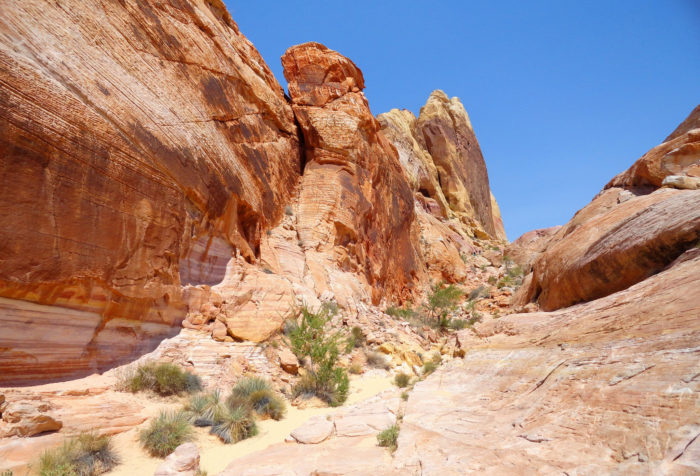 Along the way you'll discover wild flowers and eye-catching sandstone formations.