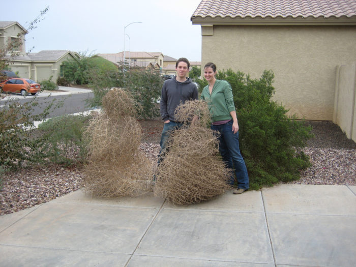 11. You've attempted to build a tumbleweed snowman.
