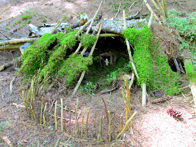 5. Find A Fairy House.