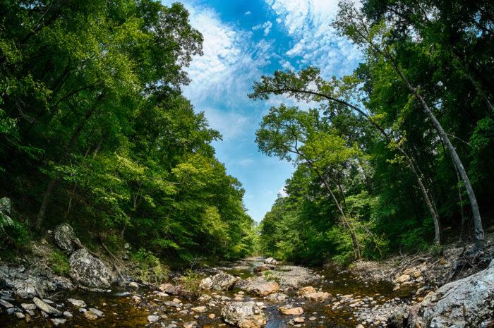11. Little Missouri Trail (Little Missouri Falls Recreation Area)