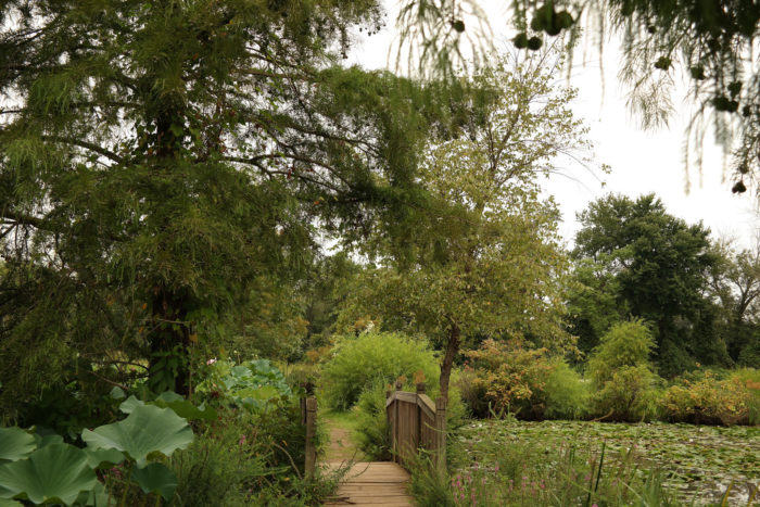 The stunning beauty of Kenilworth Gardens is always surprising to those who have never visited. The array of colors, sounds and smells make you forget that you are even close to a city.