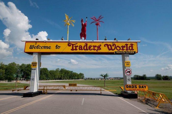 5. Trader's World